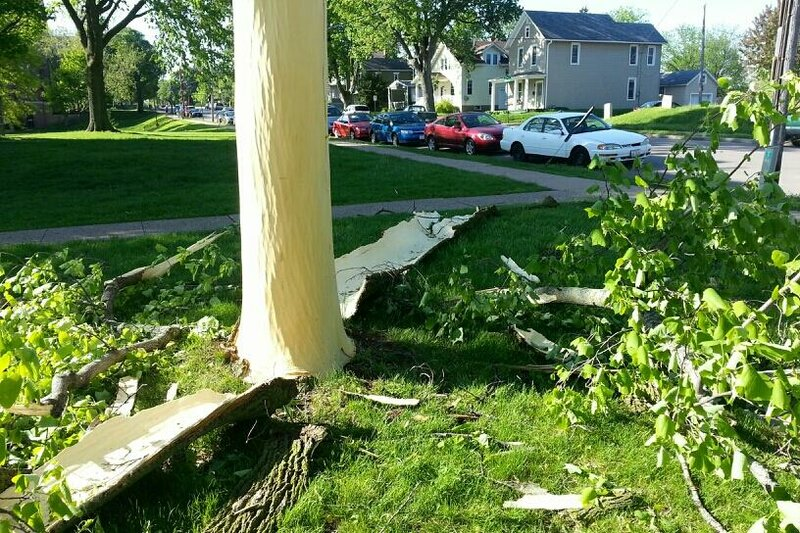 Последствия удара молнии в дерево